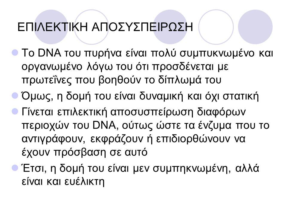 ΕΠΙΛΕΚΤΙΚΗ ΑΠΟΣΥΣΠΕΙΡΩΣΗ Το DNA του πυρήνα είναι πολύ συμπυκνωμένο και οργανωμένο λόγω του ότι προσδένεται με πρωτεΐνες που βοηθούν το δίπλωμά του Όμω