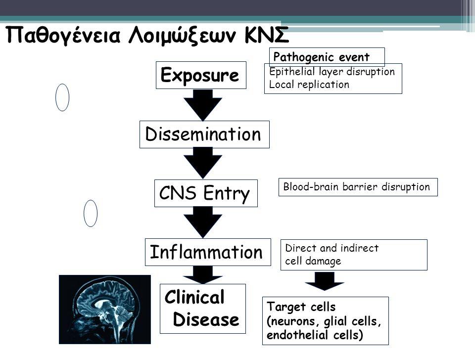 Παθογένεια Λοιμώξεων ΚΝΣ Exposure Dissemination CNS Entry Inflammation Clinical Disease Epithelial layer disruption Local replication Blood-brain barr