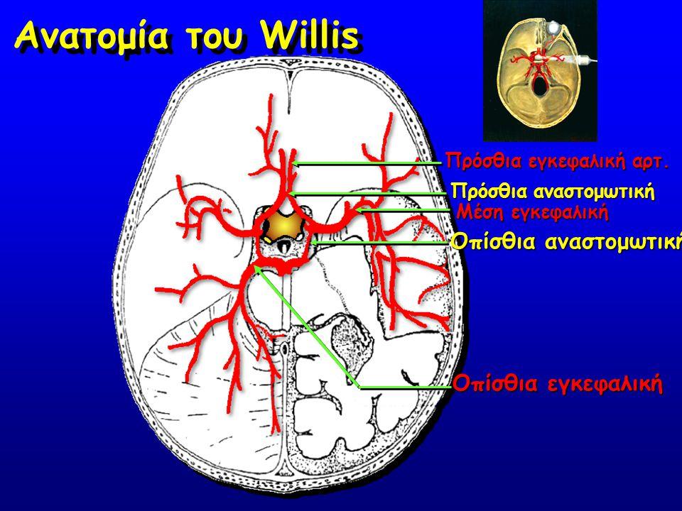 Πρόσθια εγκεφαλική αρτ. Πρόσθια αναστομωτική Οπίσθια αναστομωτική Μέση εγκεφαλική Οπίσθια εγκεφαλική Ανατομία του Willis