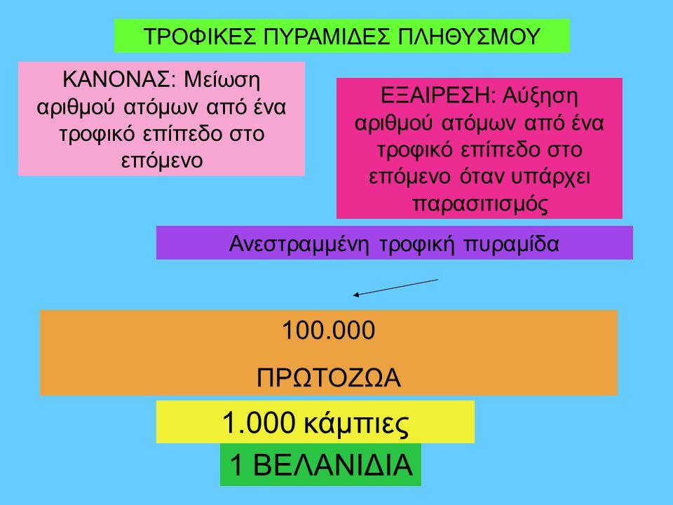 ΤΡΟΦΙΚΕΣ ΠΥΡΑΜΙΔΕΣ ΠΛΗΘΥΣΜΟΥ ΚΑΝΟΝΑΣ: Μείωση αριθμού ατόμων από ένα τροφικό επίπεδο στο επόμενο ΕΞΑΙΡΕΣΗ: Αύξηση αριθμού ατόμων από ένα τροφικό επίπεδο στο επόμενο όταν υπάρχει παρασιτισμός 1 ΒΕΛΑΝΙΔΙΑ 1.000 κάμπιες 100.000 ΠΡΩΤΟΖΩΑ Ανεστραμμένη τροφική πυραμίδα