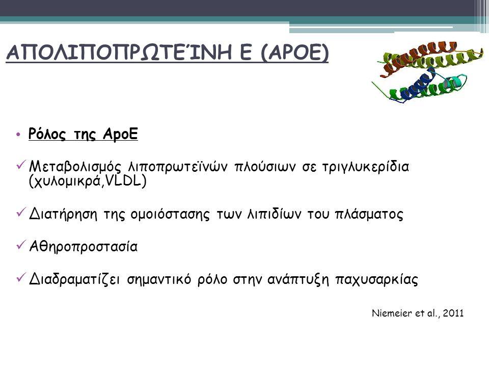 ΑΠΟΛΙΠΟΠΡΩΤΕΊΝΗ Ε (APOE) Ρόλος της ΑpoE Μεταβολισμός λιποπρωτεϊνών πλούσιων σε τριγλυκερίδια (χυλομικρά,VLDL) Διατήρηση της ομοιόστασης των λιπιδίων του πλάσματος Αθηροπροστασία Διαδραματίζει σημαντικό ρόλο στην ανάπτυξη παχυσαρκίας Niemeier et al., 2011