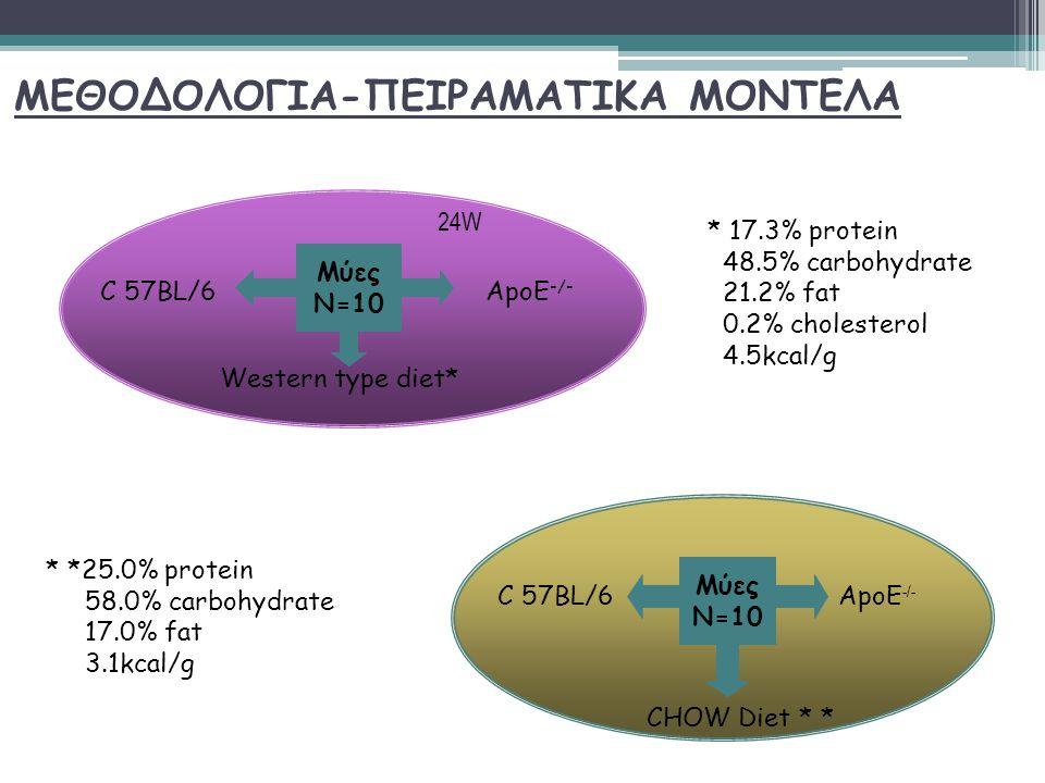 ΜΕΘΟΔΟΛΟΓΙΑ-ΠΕΙΡΑΜΑΤΙΚΑ ΜΟΝΤΕΛΑ Μύες Ν=10 ApoE -/- C 57BL/6 Western type diet* Μύες Ν=10 C 57BL/6ApoE -/- CHOW Diet * * * 17.3% protein 48.5% carbohydrate 21.2% fat 0.2% cholesterol 4.5kcal/g * *25.0% protein 58.0% carbohydrate 17.0% fat 3.1kcal/g 24W
