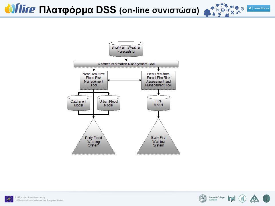 Πλατφόρμα DSS (on-line συνιστώσα)