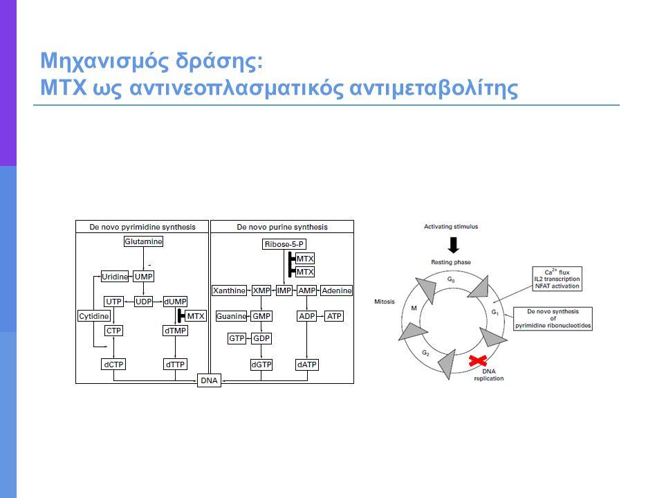 Μηχανισμός δράσης: ΜΤΧ ως αντινεοπλασματικός αντιμεταβολίτης