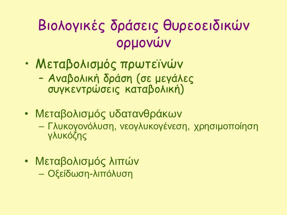 Βιολογικές δράσεις θυρεοειδικών ορμονών Μεταβολισμός πρωτεϊνών –Αναβολική δράση (σε μεγάλες συγκεντρώσεις καταβολική) Μεταβολισμός υδατανθράκων –Γλυκογονόλυση, νεογλυκογένεση, χρησιμοποίηση γλυκόζης Μεταβολισμός λιπών –Οξείδωση-λιπόλυση