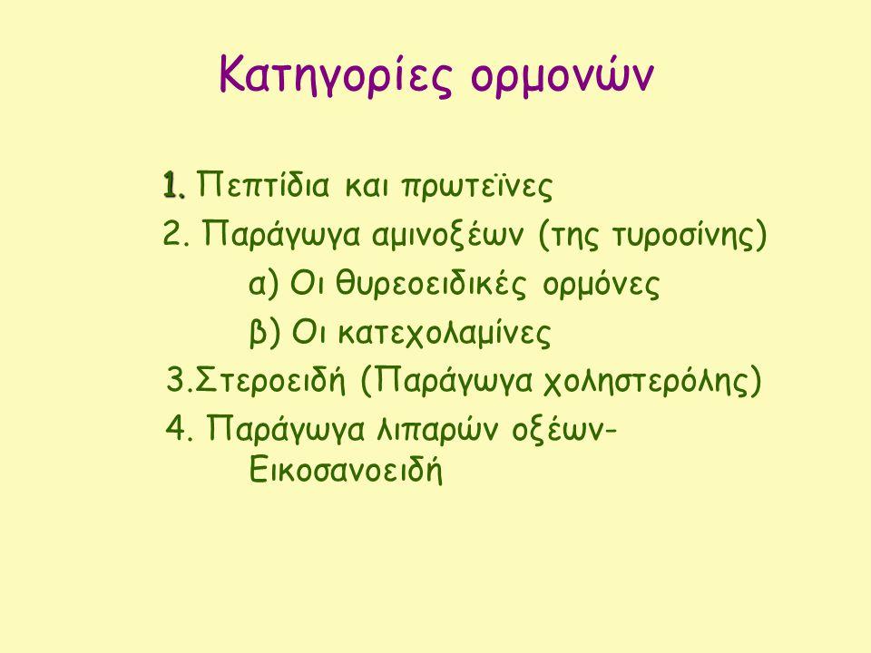 Κατηγορίες ορμονών 1. 1. Πεπτίδια και πρωτεϊνες 2. Παράγωγα αμινοξέων (της τυροσίνης) α) Οι θυρεοειδικές ορμόνες β) Οι κατεχολαμίνες 3.Στεροειδή (Παρά