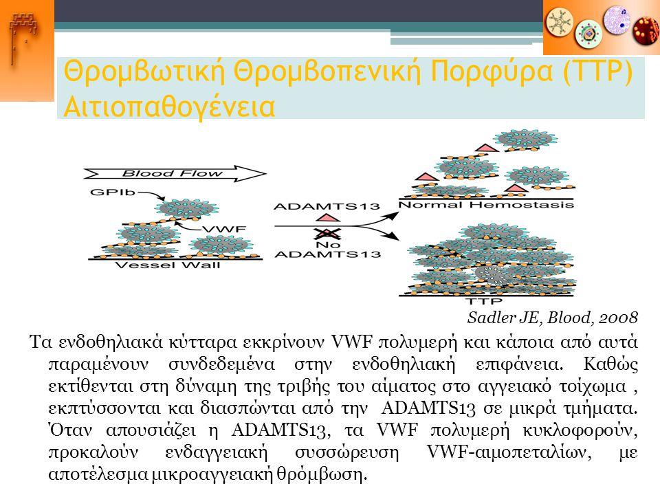 Θρομβωτική Θρομβοπενική Πορφύρα (ΤΤΡ) Αιτιοπαθογένεια Sadler JE, Blood, 2008 Τα ενδοθηλιακά κύτταρα εκκρίνουν VWF πολυμερή και κάποια από αυτά παραμέν