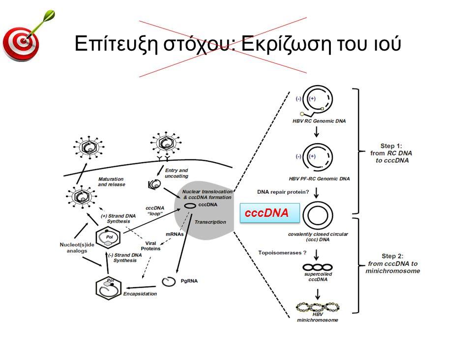 Επίτευξη στόχου: Eκρίζωση του ιού cccDNA