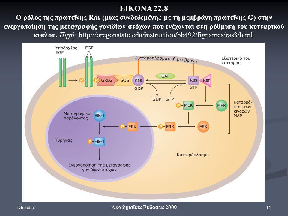 iGenetics 14 Ακαδημαϊκές Εκδόσεις 2009 ΕΙΚΟΝΑ 22.8 Ο ρόλος της πρωτεΐνης Ras (μιας συνδεδεμένης με τη μεμβράνη πρωτεΐνης G) στην ενεργοποίηση της μεταγραφής γονιδίων-στόχων που ενέχονται στη ρύθμιση του κυτταρικού κύκλου.