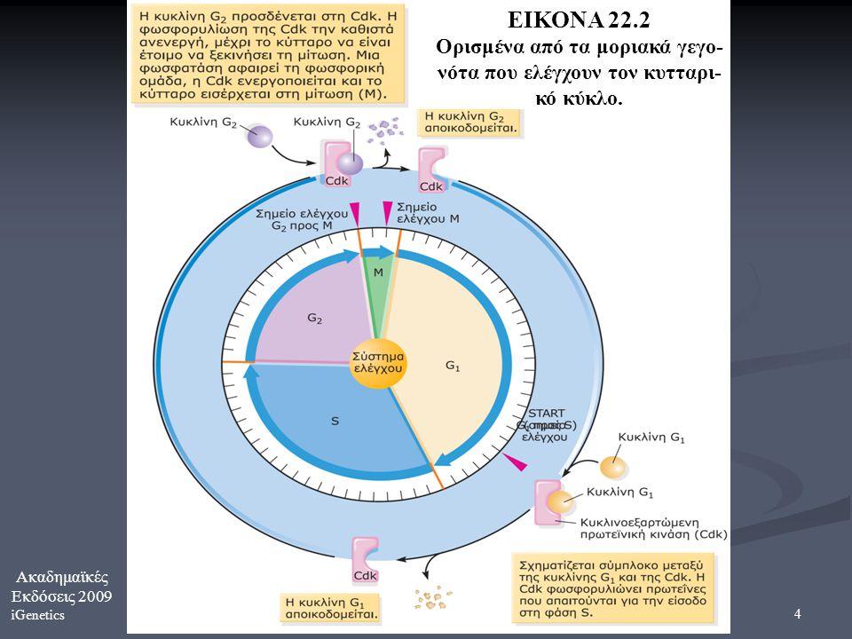Ακαδημαϊκές Εκδόσεις 2009 iGenetics 4 ΕΙΚΟΝΑ 22.2 Ορισμένα από τα μοριακά γεγο- νότα που ελέγχουν τον κυτταρι- κό κύκλο.