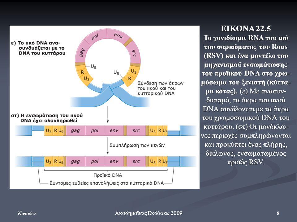 iGenetics 8 Ακαδημαϊκές Εκδόσεις 2009 ΕΙΚΟΝΑ 22.5 To γονιδίωμα RNA του ιού του σαρκώματος του Rous (RSV) και ένα μοντέλο του μηχανισμού ενσωμάτωσης του προϊικού DNA στο χρω- μόσωμα του ξενιστή (κύττα- ρα κότας).