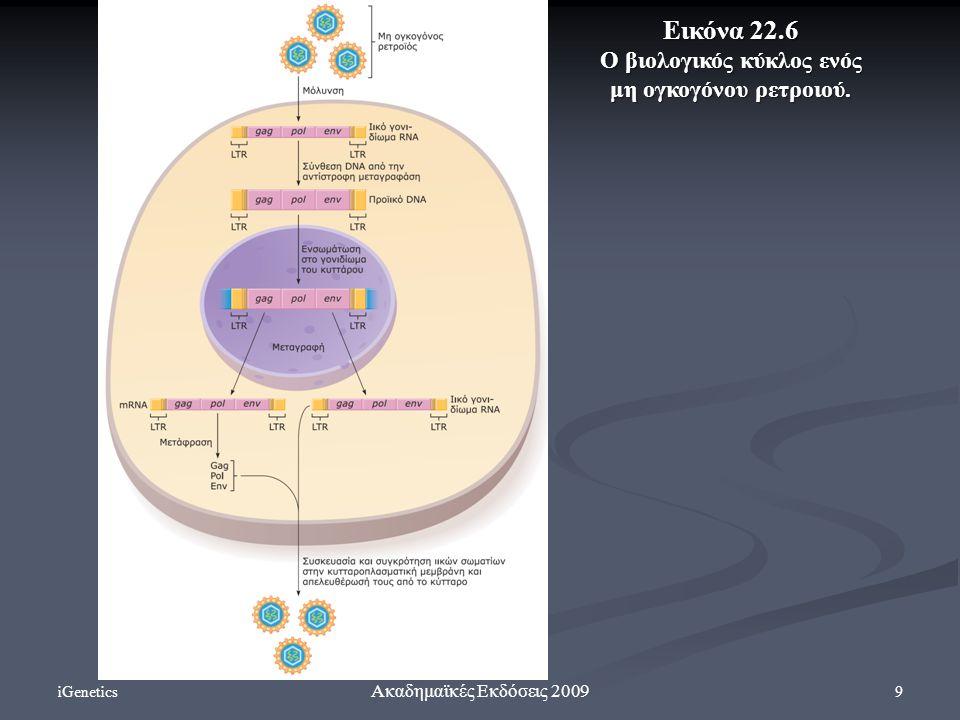 iGenetics 9 Ακαδημαϊκές Εκδόσεις 2009 Eικόνα 22.6 Ο βιολογικός κύκλος ενός μη ογκογόνου ρετροιού.