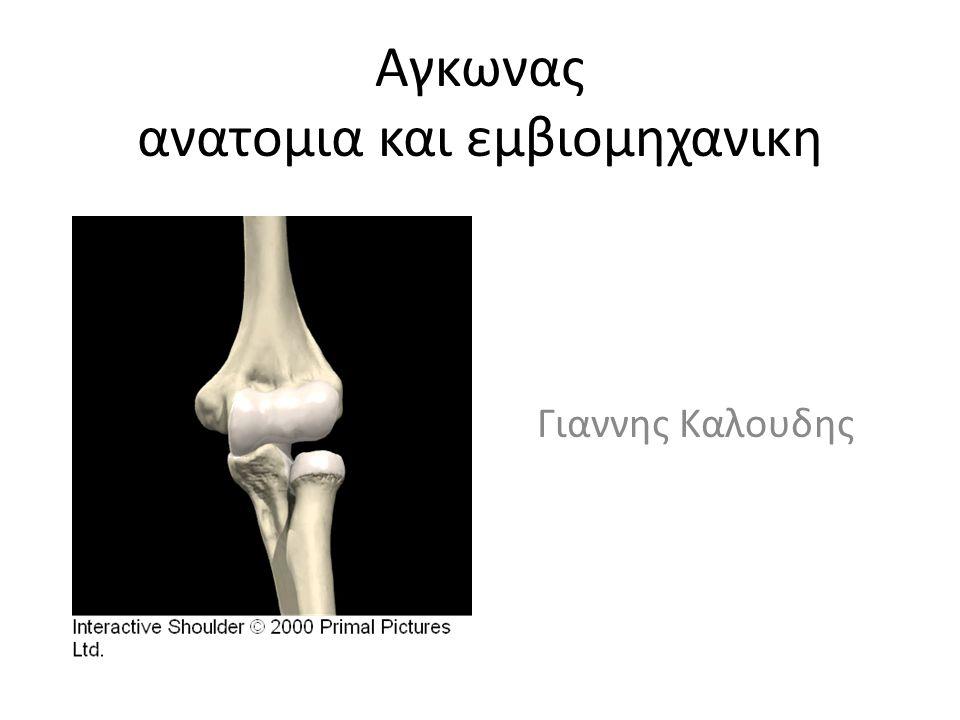 Αγκωνας ανατομια και εμβιομηχανικη Γιαννης Καλουδης