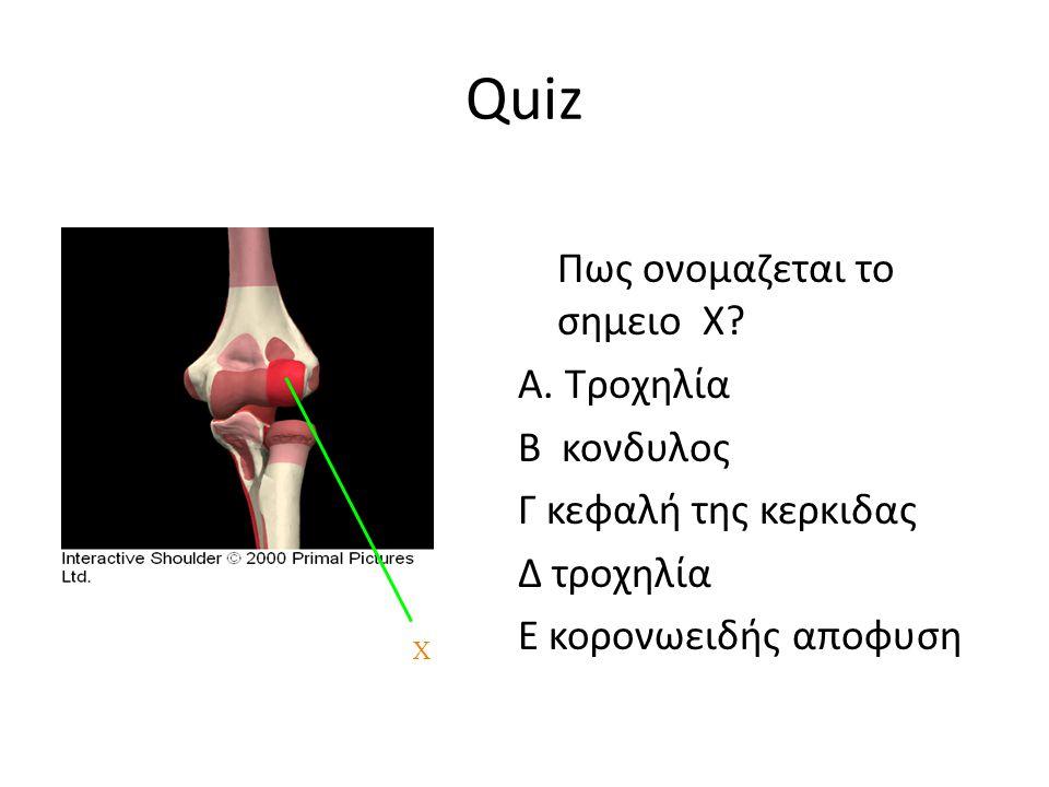 Quiz Πως ονομαζεται το σημειο Χ.Α.
