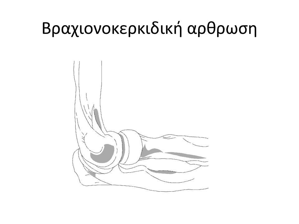 Βραχιονωλενια άρθρωση