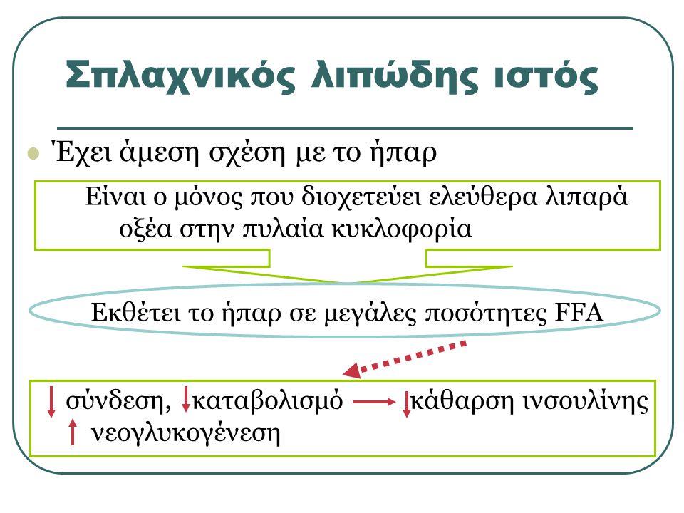 Σπλαχνικός λιπώδης ιστός Έχει άμεση σχέση με το ήπαρ Είναι ο μόνος που διοχετεύει ελεύθερα λιπαρά οξέα στην πυλαία κυκλοφορία σύνδεση, καταβολισμό κάθαρση ινσουλίνης νεογλυκογένεση Εκθέτει το ήπαρ σε μεγάλες ποσότητες FFA