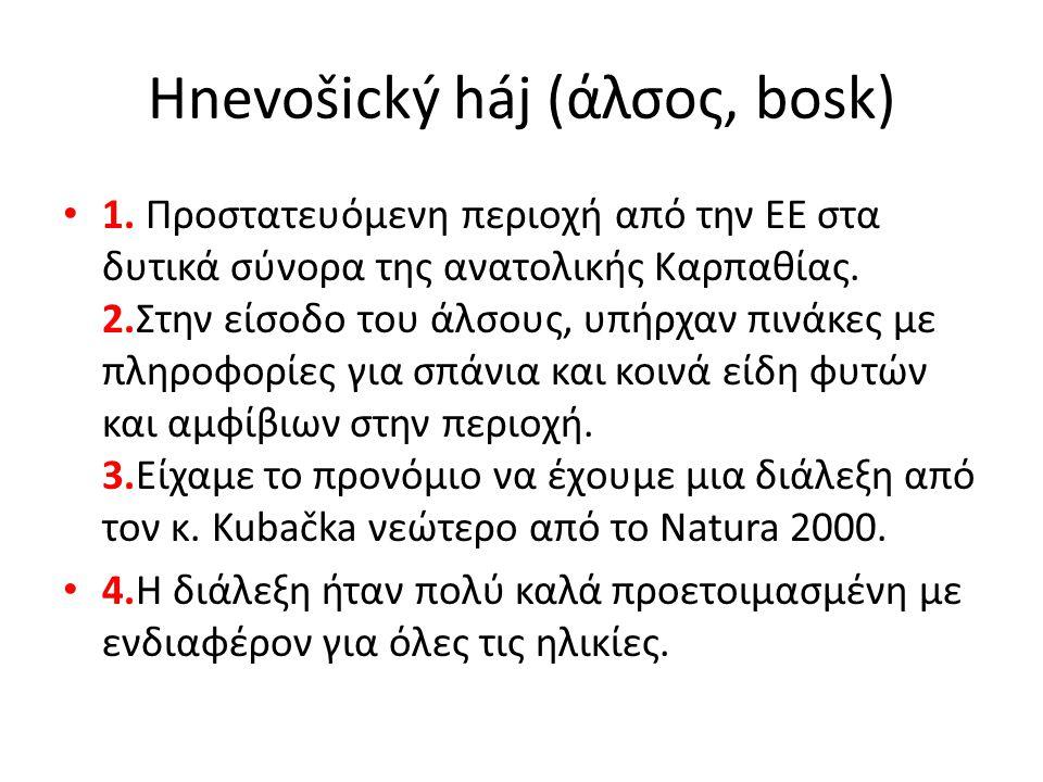 Hnevošický háj (άλσος, bosk) 1. Προστατευόμενη περιοχή από την ΕΕ στα δυτικά σύνορα της ανατολικής Καρπαθίας. 2.Στην είσοδο του άλσους, υπήρχαν πινάκε