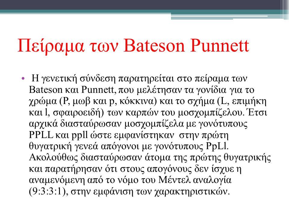 Πείραμα των Bateson Punnett Η γενετική σύνδεση παρατηρείται στο πείραμα των Bateson και Punnett, που μελέτησαν τα γονίδια για το χρώμα (P, μωβ και p,