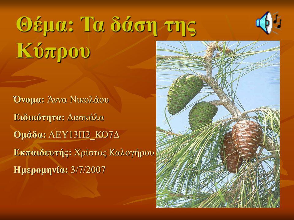 Θέμα: Τα δάση της Κύπρου Όνομα: Άννα Νικολάου Ειδικότητα: Δασκάλα Ομάδα: ΛΕΥ13Π2_ΚΟ7Δ Εκπαιδευτής: Χρίστος Καλογήρου Ημερομηνία: 3/7/2007