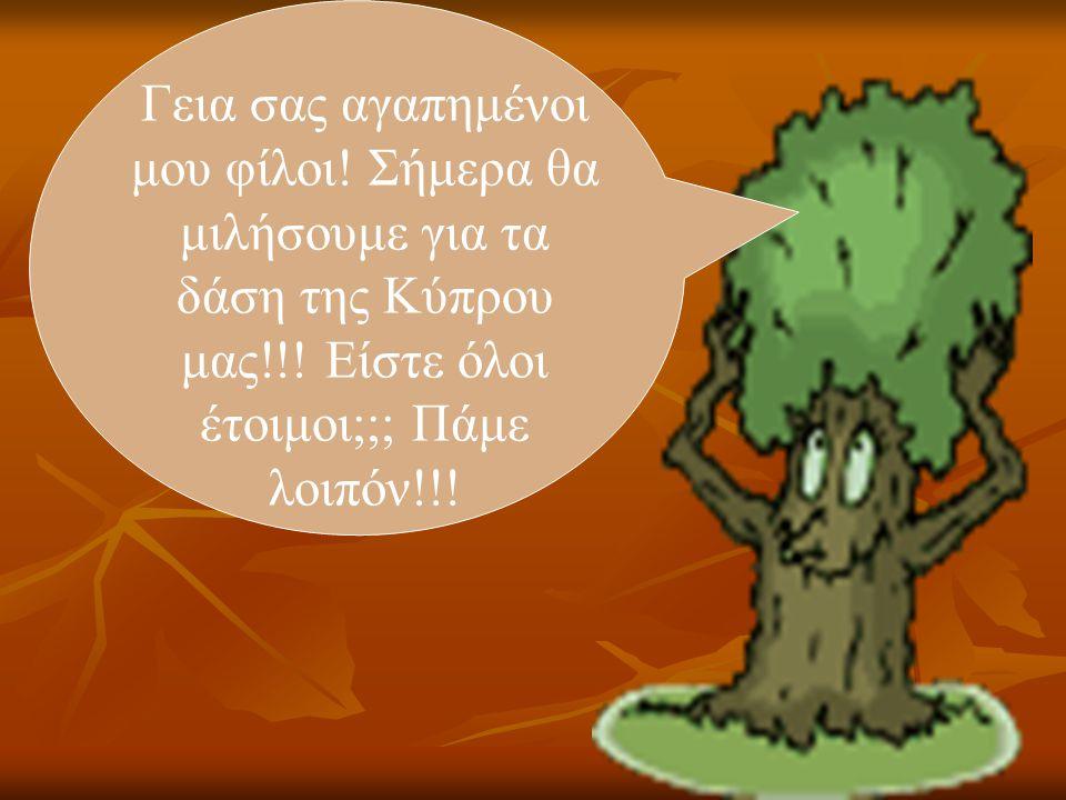 Γεια σας αγαπημένοι μου φίλοι! Σήμερα θα μιλήσουμε για τα δάση της Κύπρου μας!!! Είστε όλοι έτοιμοι;;; Πάμε λοιπόν!!!