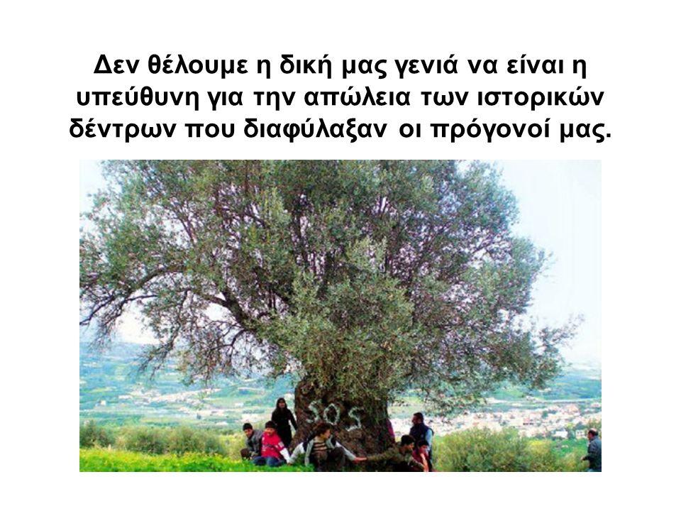 Δεν θέλουμε η δική μας γενιά να είναι η υπεύθυνη για την απώλεια των ιστορικών δέντρων που διαφύλαξαν οι πρόγονοί μας.