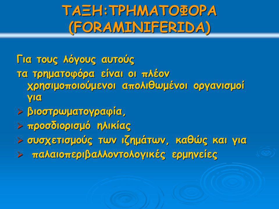 ΤΑΞΗ:ΤΡΗΜΑΤΟΦΟΡΑ (FORAMINIFERIDA) Για τους λόγους αυτούς τα τρηματοφόρα είναι οι πλέον χρησιμοποιούμενοι απολιθωμένοι οργανισμοί για  βιοστρωματογραφ