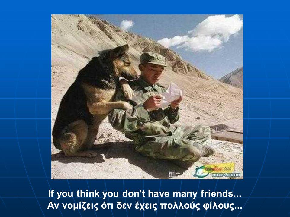 If you think you don t have many friends... Αν νομίζεις ότι δεν έχεις πολλούς φίλους...