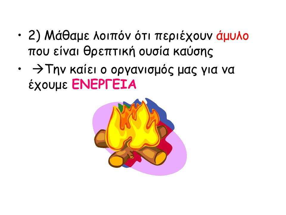 2) Μάθαμε λοιπόν ότι περιέχουν άμυλο που είναι θρεπτική ουσία καύσης  Την καίει ο οργανισμός μας για να έχουμε ΕΝΕΡΓΕΙΑ