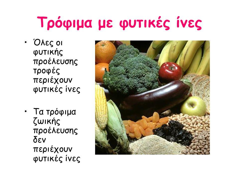 Τρόφιμα με φυτικές ίνες Όλες οι φυτικής προέλευσης τροφές περιέχουν φυτικές ίνες Τα τρόφιμα ζωικής προέλευσης δεν περιέχουν φυτικές ίνες