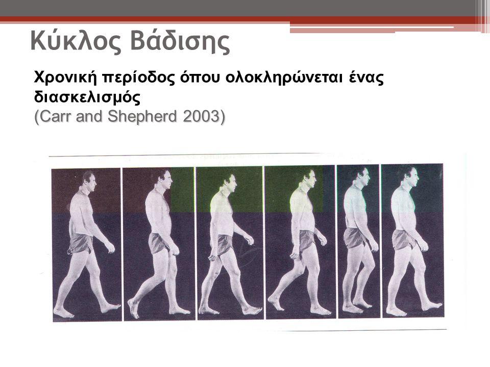 Κύκλος Βάδισης Χρονική περίοδος όπου ολοκληρώνεται ένας διασκελισμός (Carr and Shepherd 2003)