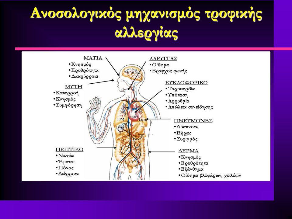 Ανοσολογικός μηχανισμός τροφικής αλλεργίας Απελευθέρωση αλλεργιογόνου και είσοδό του στην κυκλοφορία Λήψη-διάσπαση τροφής Ενεργοποίηση των μαστοκυττάρ