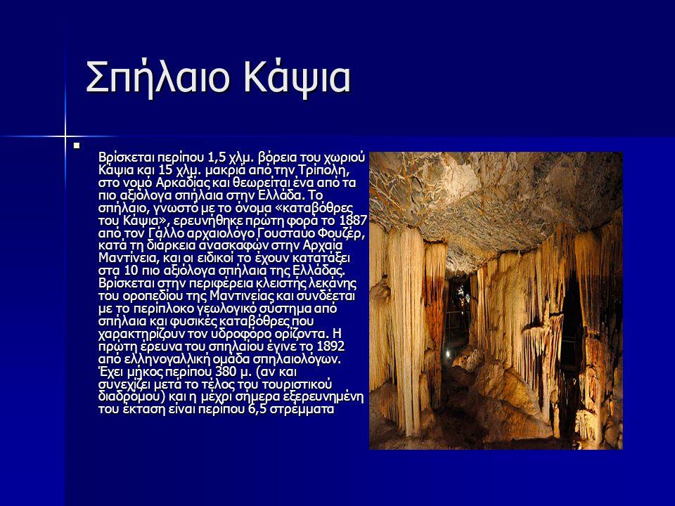 Σπήλαιο Κάψια Βρίσκεται περίπου 1,5 χλμ. βόρεια του χωριού Κάψια και 15 χλμ. μακριά από την Τρίπολη, στο νομό Αρκαδίας και θεωρείται ένα από τα πιο αξ