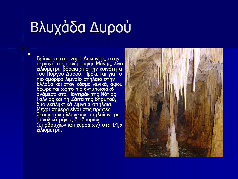 Σπήλαιο Καστανιάς Γνωστό και ως σπήλαιο του Αγίου Ανδρέα, πλούσιο σε ποικιλία σχημάτων και χρωμάτων, κατατάσσεται δεύτερο στο είδος του στην Ευρώπη.
