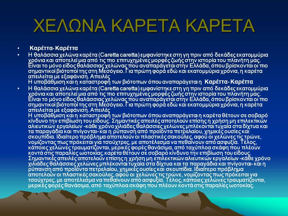 ΧΕΛΩΝΑ ΚΑΡΕΤΑ ΚΑΡΕΤΑ Καρέττα- Καρέττα Η θαλάσσια χελώνα καρέτα (Caretta caretta) εμφανίστηκε στη γη πριν από δεκάδες εκατομμύρια χρόνια και αποτελεί μια από τις πιο επιτυχημένες μορφές ζωής στην ιστορία του πλανήτη μας.