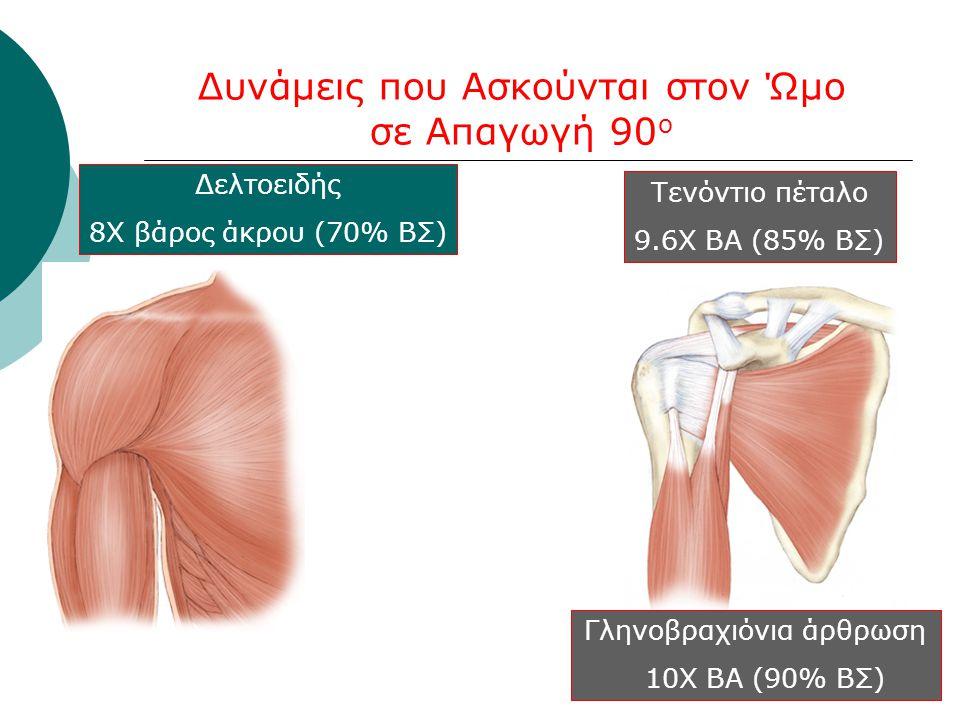 Δυνάμεις που Ασκούνται στον Ώμο σε Απαγωγή 90 ο Δελτοειδής 8Χ βάρος άκρου (70% ΒΣ) Τενόντιο πέταλο 9.6Χ ΒΑ (85% ΒΣ) Γληνοβραχιόνια άρθρωση 10Χ ΒΑ (90%