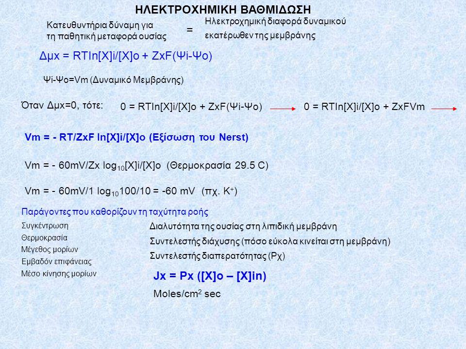 Δμx = RTIn[X]i/[X]o + ZxF(Ψi-Ψo) Κατευθυντήρια δύναμη για τη παθητική μεταφορά ουσίας = Ηλεκτροχημική διαφορά δυναμικού εκατέρωθεν της μεμβράνης Ψi-Ψo=Vm (Δυναμικό Μεμβράνης) Όταν Δμx=0, τότε: 0 = RTIn[X]i/[X]o + ZxF(Ψi-Ψo)0 = RTIn[X]i/[X]o + ZxFVm Vm = - RT/ZxF In[X]i/[X]o (Εξίσωση του Nerst) Vm = - 60mV/Zx log 10 [X]i/[X]o (Θερμοκρασία 29.5 C) Vm = - 60mV/1 log 10 100/10 = -60 mV (πχ.