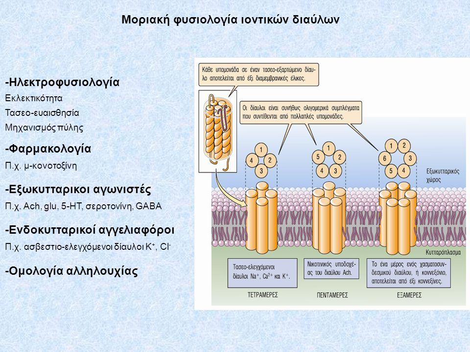 Μοριακή φυσιολογία ιοντικών διαύλων -Ηλεκτροφυσιολογία Εκλεκτικότητα Τασεο-ευαισθησία Μηχανισμός πύλης -Φαρμακολογία Π.χ. μ-κονοτοξίνη -Εξωκυτταρικοι