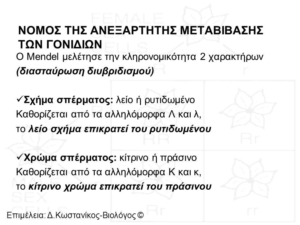 ΝΟΜΟΣ ΤΗΣ ΑΝΕΞΑΡΤΗΤΗΣ ΜΕΤΑΒΙΒΑΣΗΣ ΤΩΝ ΓΟΝΙΔΙΩΝ Ο Mendel μελέτησε την κληρονομικότητα 2 χαρακτήρων (διασταύρωση διυβριδισμού) Σχήμα σπέρματος: λείο ή ρ