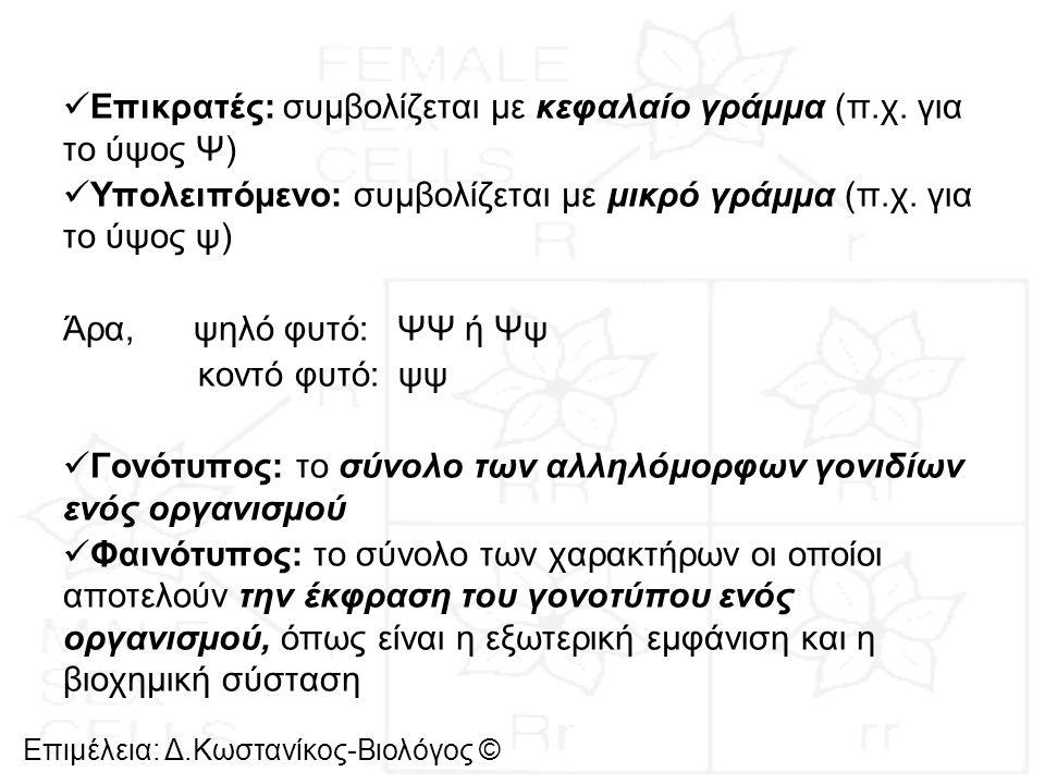 Επιμέλεια: Δ.Κωστανίκος-Βιολόγος © Νόμοι του Mendel και μείωση Στη διασταύρωση του Mendel για το ύψος των φυτών στην F 2 γενιά προκύπτουν οι παρακάτω αναλογίες: Γονοτυπική αναλογία: 1 ΨΨ : 2 Ψψ : 1ψψ Φαινοτυπική αναλογία: 3 ψηλά φυτά : 1 κοντό φυτό Οι αναλογίες αυτές υπολογίζονται εύκολα από το τετράγωνο του Punnett : PΨΨΧψψ γαμέτεςΨψ F 1 γενιάΨψΧΨψ (αυτογονιμοποίηση) γαμέτεςΨ, ψΨ, ψ