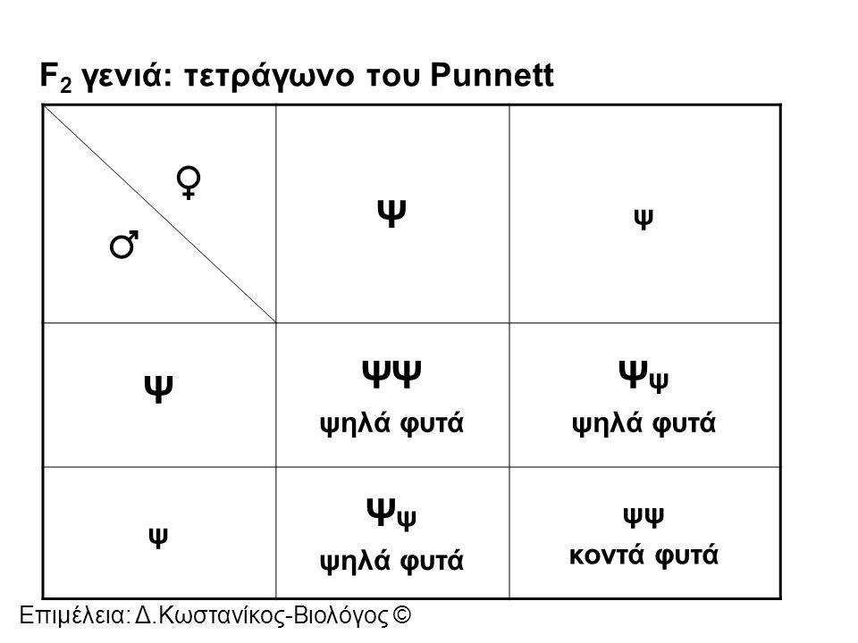 Διασταύρωση μονοϋβριδισμού: οι διασταυρώσεις όπου μελετάται ο τρόπος κληρονόμησης ενός χαρακτήρα Ο Mendel αν ένα ψηλό φυτό είχε γονότυπο ΨΨ (ομόζυγο) ή Ψψ (ετερόζυγο) έκανε διασταύρωση ελέγχου.
