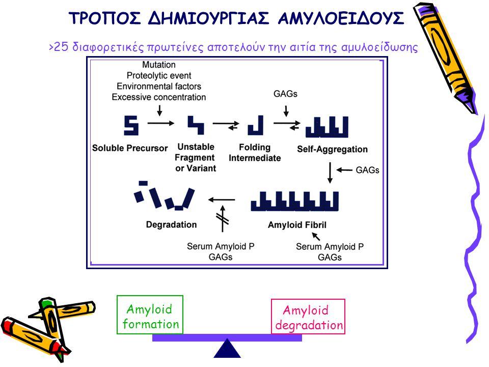 >25 διαφορετικές πρωτείνες αποτελούν την αιτία της αμυλοείδωσης Amyloid formation Amyloid degradation ΤΡΟΠΟΣ ΔΗΜΙΟΥΡΓΙΑΣ ΑΜΥΛΟΕΙΔΟΥΣ
