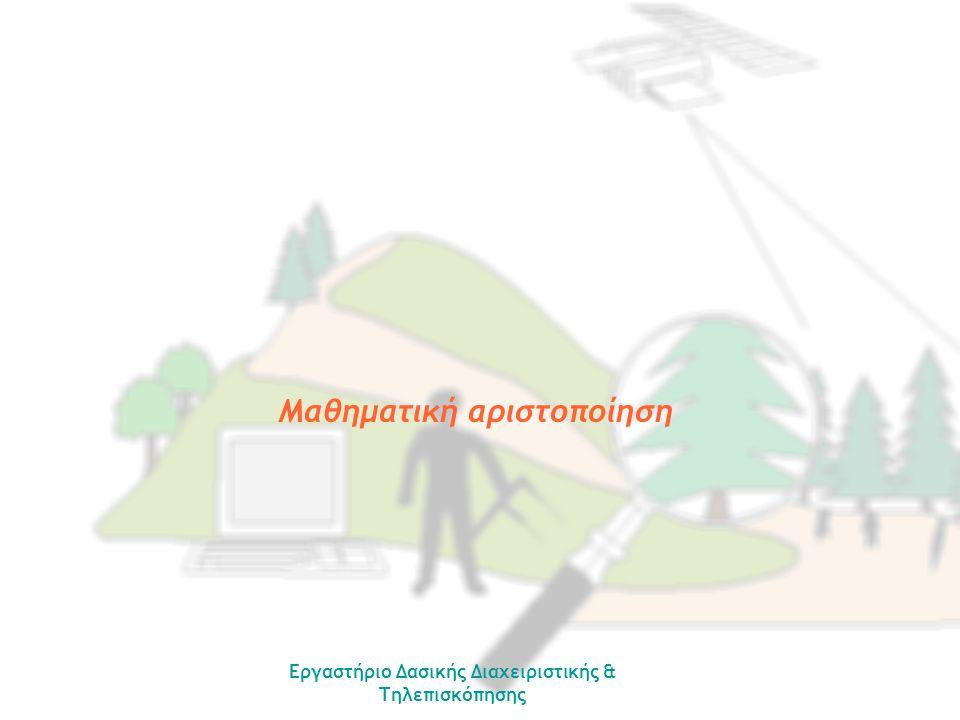 Εργαστήριο Δασικής Διαχειριστικής & Τηλεπισκόπησης Μαθηματική αριστοποίηση