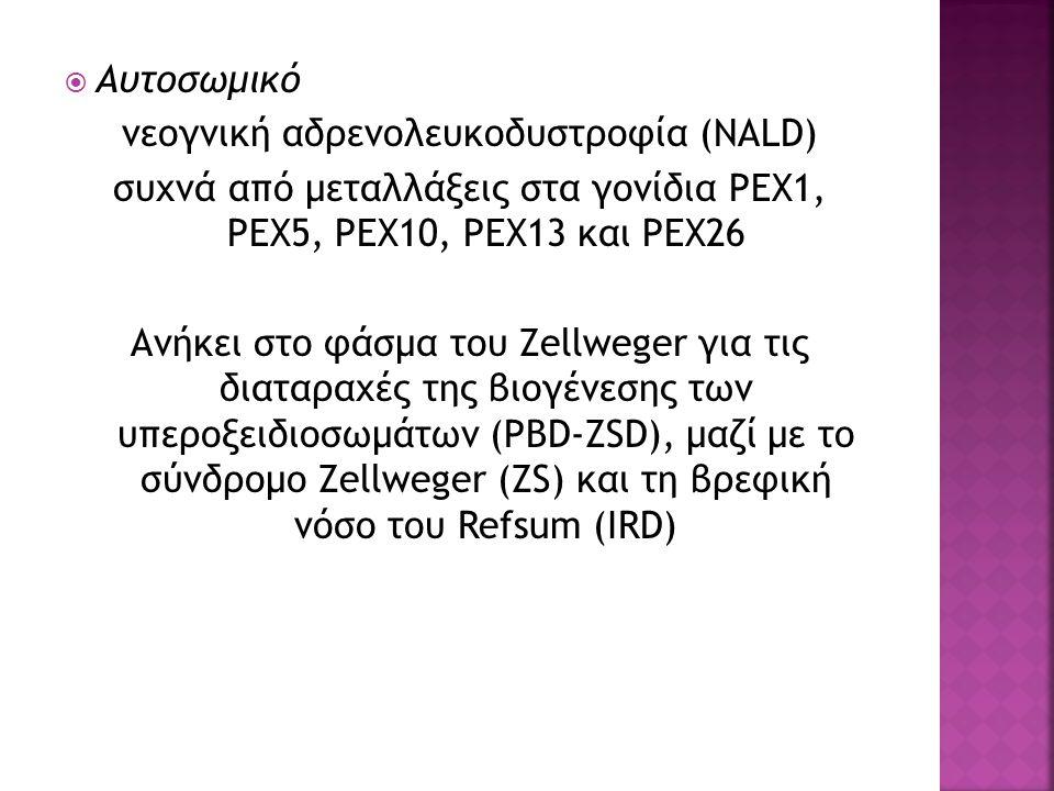  Αυτοσωμικό νεογνική αδρενολευκοδυστροφία (NALD) συχνά από μεταλλάξεις στα γονίδια PEX1, PEX5, PEX10, PEX13 και PEX26 Ανήκει στο φάσμα του Zellweger