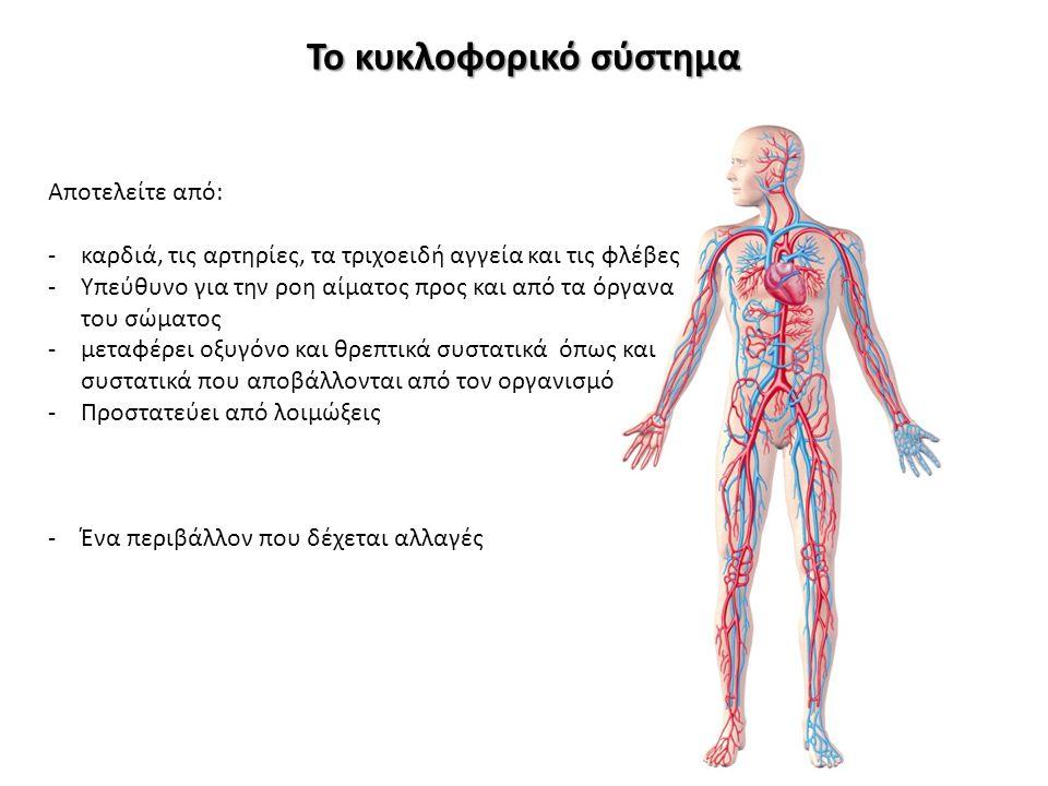 Το κυκλοφορικό σύστημα Αποτελείτε από: -καρδιά, τις αρτηρίες, τα τριχοειδή αγγεία και τις φλέβες -Υπεύθυνο για την ροη αίματος προς και από τα όργανα
