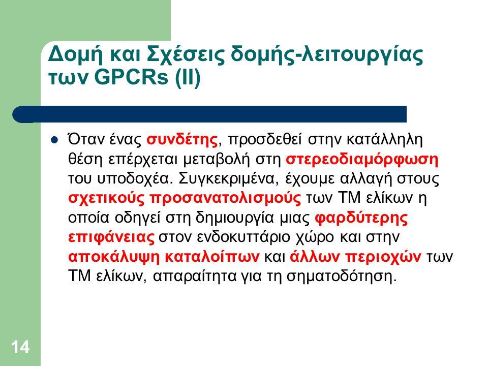 14 Δομή και Σχέσεις δομής-λειτουργίας των GPCRs (ΙΙ) Όταν ένας συνδέτης, προσδεθεί στην κατάλληλη θέση επέρχεται μεταβολή στη στερεοδιαμόρφωση του υποδοχέα.