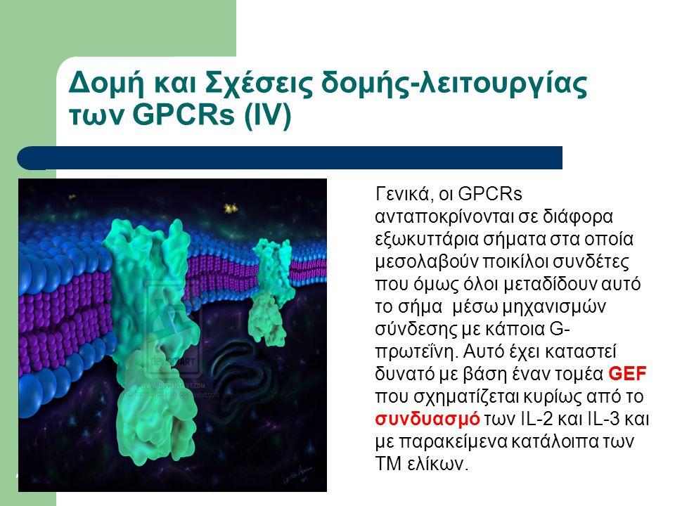16 Δομή και Σχέσεις δομής-λειτουργίας των GPCRs (ΙV) Γενικά, οι GPCRs ανταποκρίνονται σε διάφορα εξωκυττάρια σήματα στα οποία μεσολαβούν ποικίλοι συνδέτες που όμως όλοι μεταδίδουν αυτό το σήμα μέσω μηχανισμών σύνδεσης με κάποια G- πρωτεΐνη.