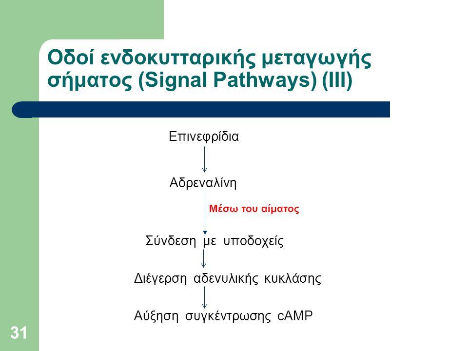 31 Οδοί ενδοκυτταρικής μεταγωγής σήματος (Signal Pathways) (ΙIΙ) Επινεφρίδια Αδρεναλίνη Μέσω του αίματος Σύνδεση με υποδοχείς Διέγερση αδενυλικής κυκλάσης Αύξηση συγκέντρωσης cΑΜΡ