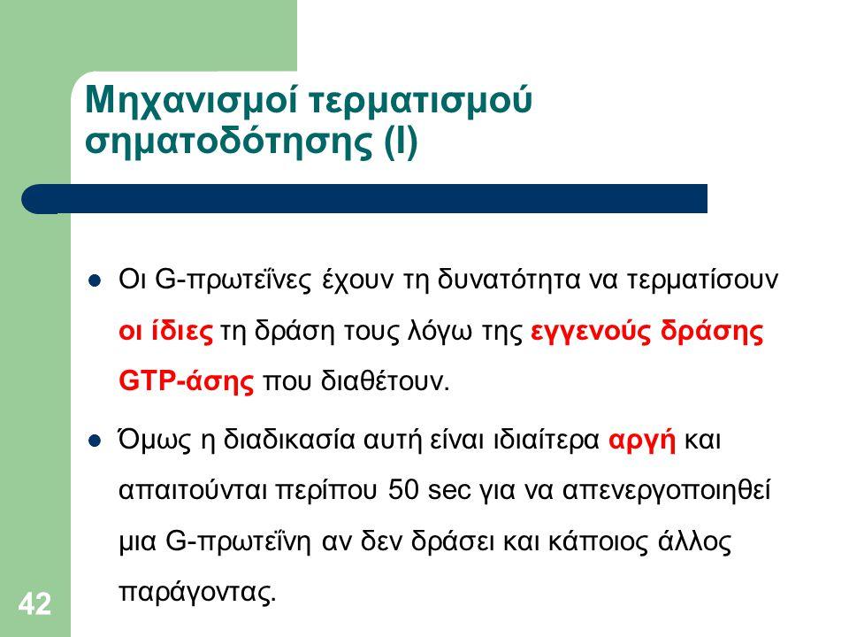42 Μηχανισμοί τερματισμού σηματοδότησης (I) Οι G-πρωτεΐνες έχουν τη δυνατότητα να τερματίσουν οι ίδιες τη δράση τους λόγω της εγγενούς δράσης GTP-άσης που διαθέτουν.