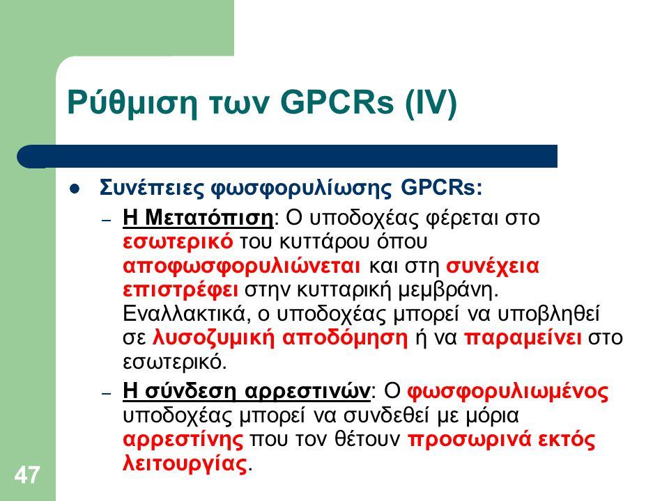 47 Ρύθμιση των GPCRs (ΙV) Συνέπειες φωσφορυλίωσης GPCRs: – Η Μετατόπιση: Ο υποδοχέας φέρεται στο εσωτερικό του κυττάρου όπου αποφωσφορυλιώνεται και στη συνέχεια επιστρέφει στην κυτταρική μεμβράνη.