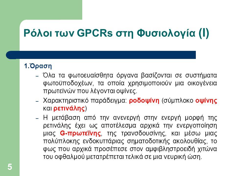 5 Ρόλοι των GPCRs στη Φυσιολογία (Ι) 1.Όραση – Όλα τα φωτοευαίσθητα όργανα βασίζονται σε συστήματα φωτοϋποδοχέων, τα οποία χρησιμοποιούν μια οικογένεια πρωτεϊνών που λέγονται οψίνες.
